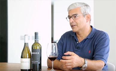 Revista de Vinhos - Luís Duarte