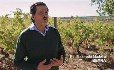RV - Rui Reboredo Madeira